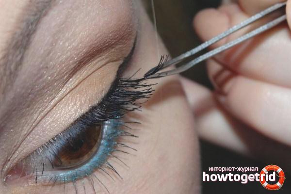 How to glue false eyelashes bundles