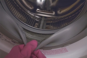 How to get rid of mold in the washing machine