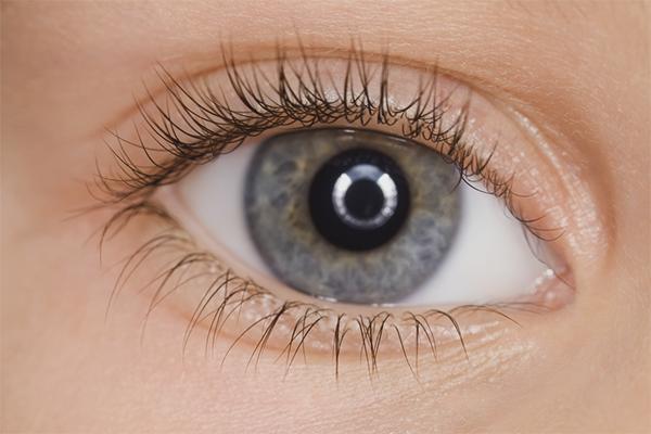 How to strengthen eyelashes and improve their growth