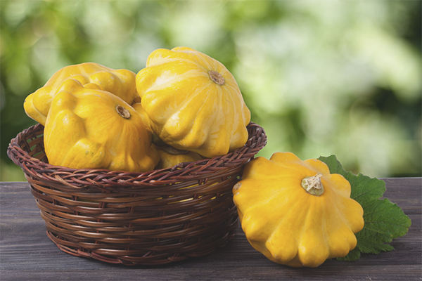 The benefits and harms of the squash