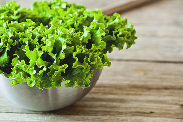 The benefits and harms of leaf lettuce