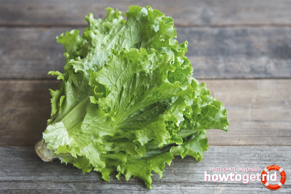 The benefits of salad for weight loss