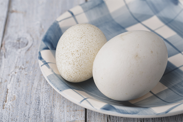 The benefits and harm of goose eggs