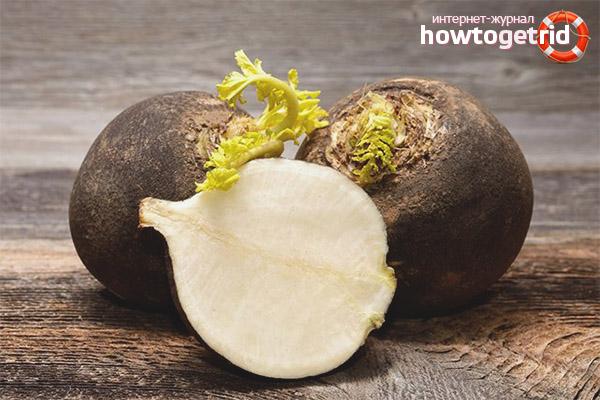 Medicinal properties of black radish