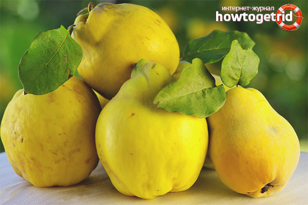 Damage to quinces during pregnancy
