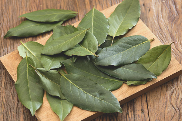 How to use bay leaf for weight loss