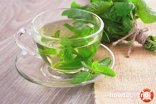 How to drink mint during pregnancy