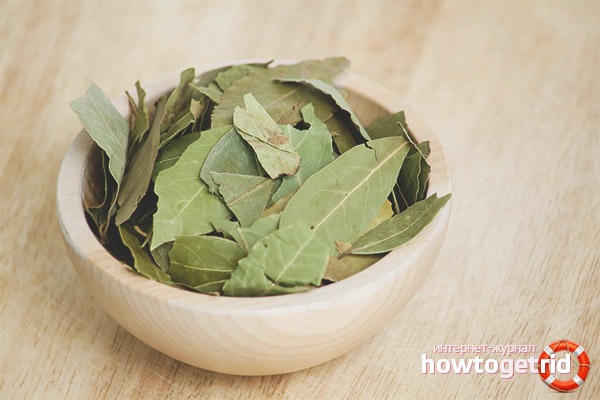 Bay leaf for weight loss