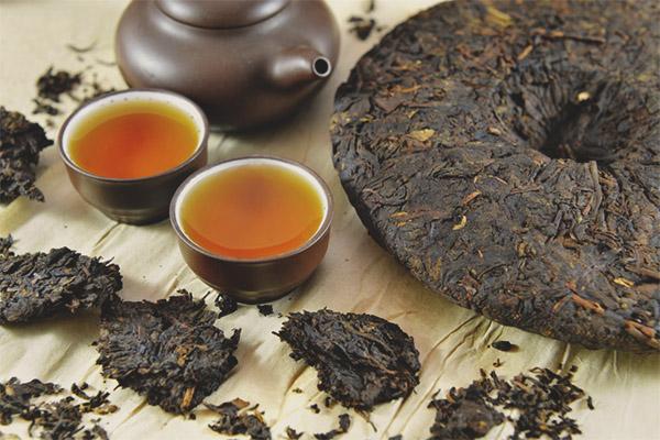 Proprietăți utile și contraindicații ale ceaiului pu-erh