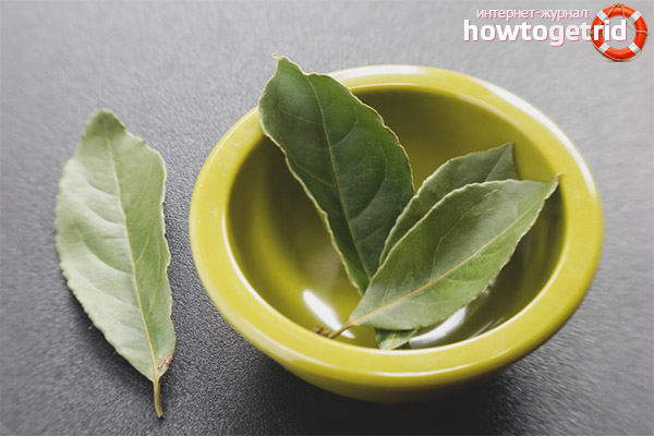 Recipes with bay leaf for weight loss