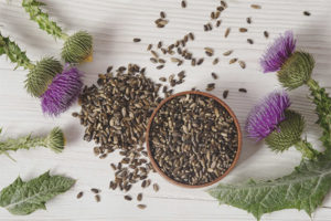 How to take milk thistle for weight loss