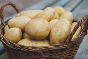 Breastfeeding potatoes