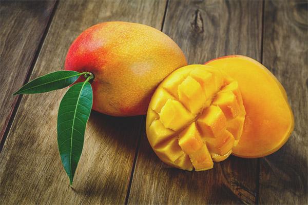 Mango breastfeeding