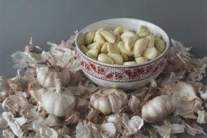 Propriétés utiles et utilisation de la peau d'ail