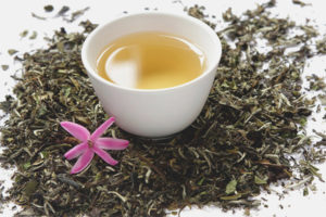 How to use white tea for weight loss