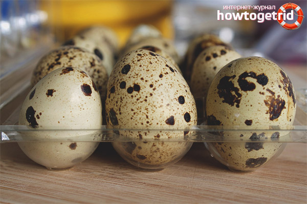 How to choose quail eggs