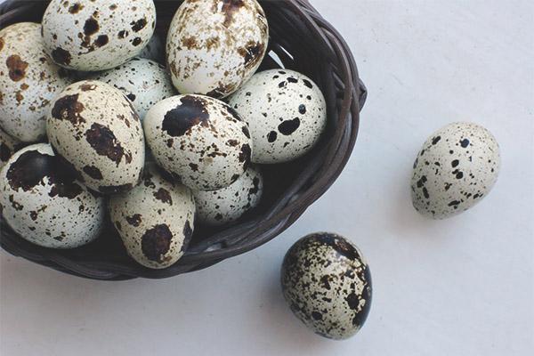 Quail eggs for potency