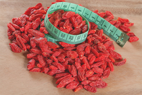 How To Take Goji Berries For Weight Loss
